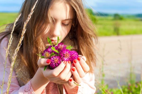 Bőrápoló gyógynövények