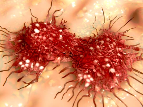 Immunterápiával a daganatok ellen