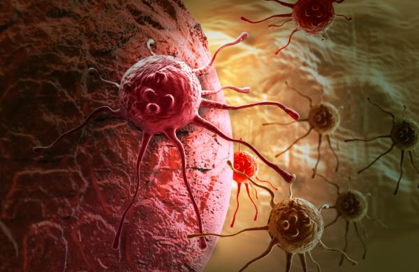 Emberben élő rákos parazitából támadt a daganatos betegség