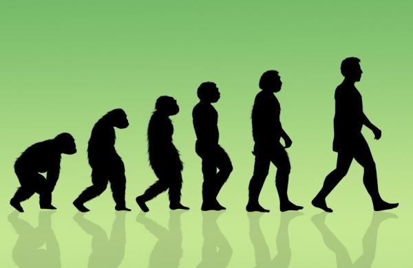 Az okos tanuló és a szex: hogyan tanul az evolúció?