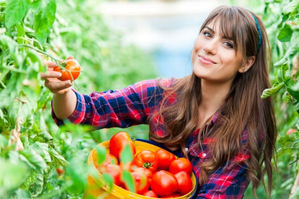 Egy egyszerű étrendváltás megváltaná a világot