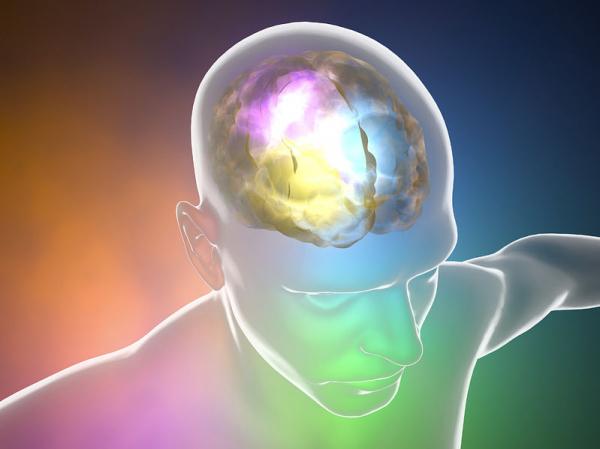 Magyar felfedezés az agyi infarktus kezelésében