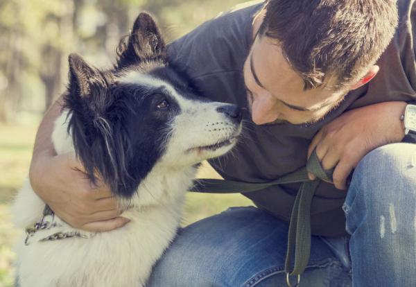 Így védje kutyáját a szívférgességtől