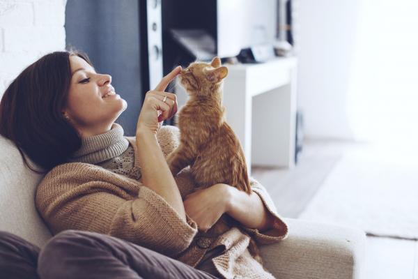 A macskatartás nem károsítja a mentális egészséget