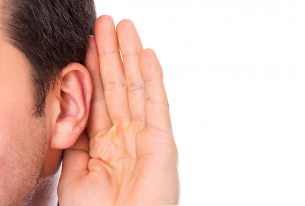 A fül anatómiája és betegségei