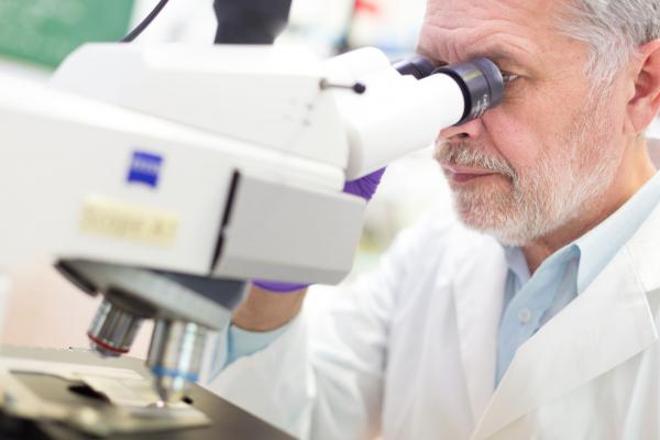 A térbeli tájékozódásért felelős agysejteket vizsgálta két magyar kutató