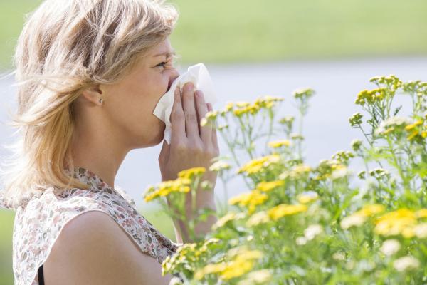 Tavasz, napsütés, allergia