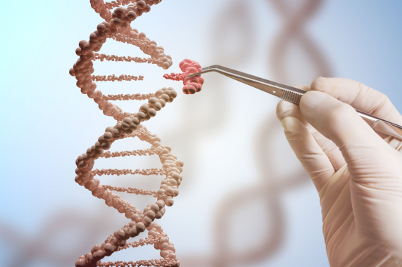 Génszerkesztés élő ember szervezetében