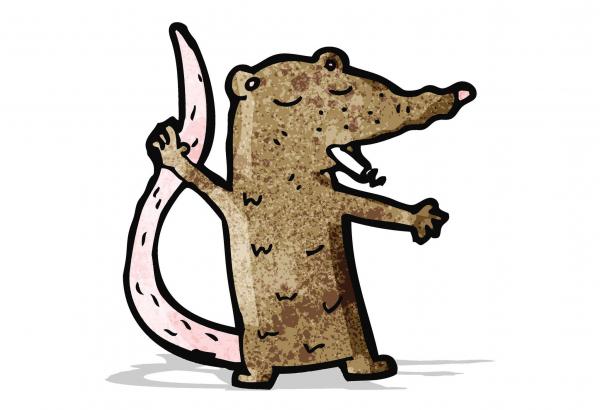 Az e-cigarettázó egerek tanulságos kísérlete