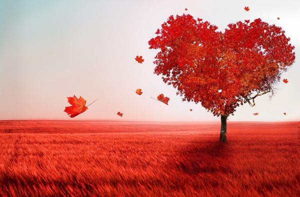A szívbetegségek nagy részéért mi vagyunk a felelősek