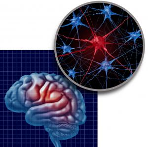 Újfejlesztésű implantátum egy a Parkinson-kóros agyába