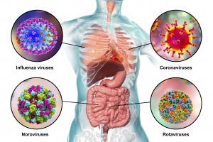 Koronavírus - A gyerekeket jobban védi immunrendszerük