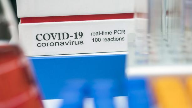 Hat hónapig kimutathatók az antitestek