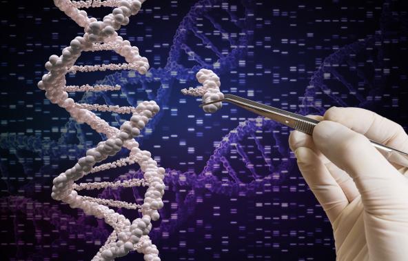Gén az időskori rák és memóriazavar előrejelzésére