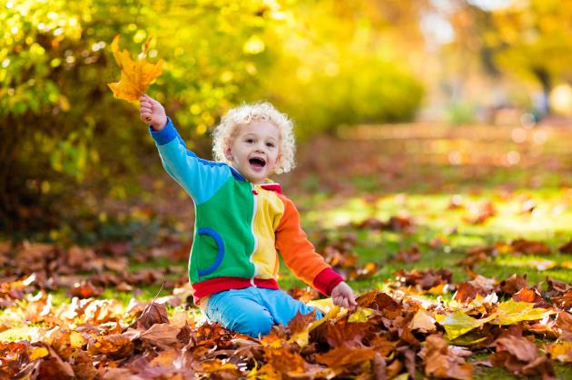 A felmelegedés eltüntetheti az ősz színeit