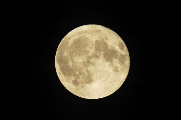 Hold asztrológia