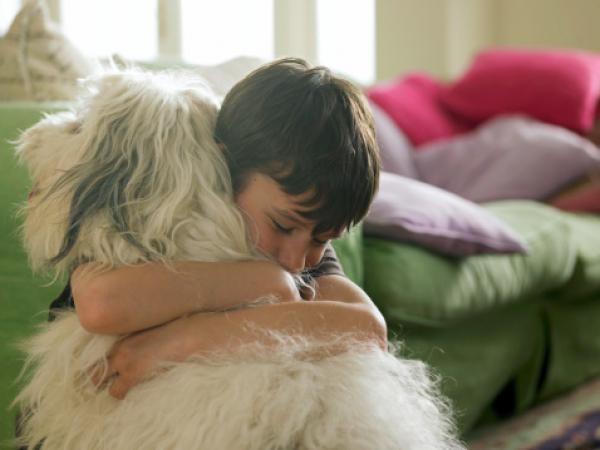 A kutyáknak még erkölcsi érzékük is van