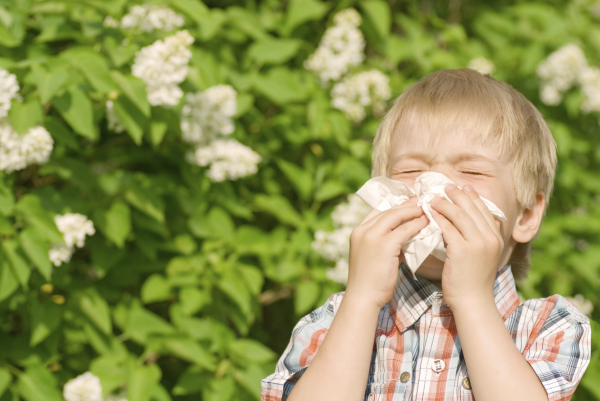 Allergiás gyermek az iskolában