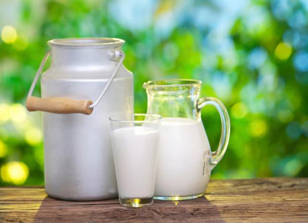 Már időszámításunk előtt 5000-ben is fogyasztottunk tejet