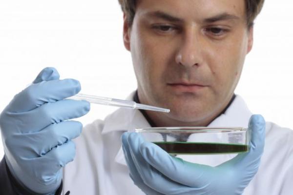 Kérdezz-felelek az őssejtekről