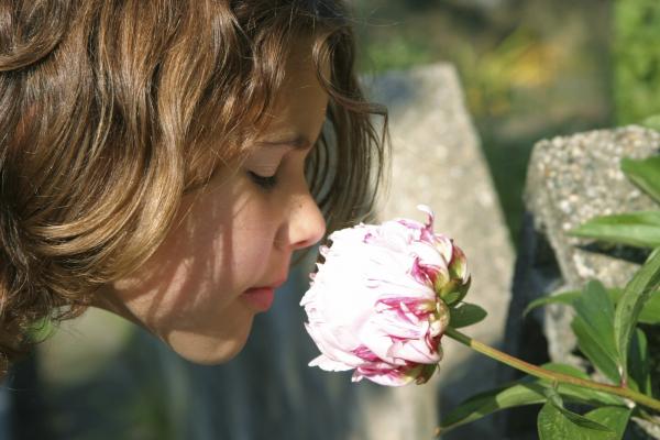 Tanácsok allergiás, asztmás gyermekek szüleinek a nyárra