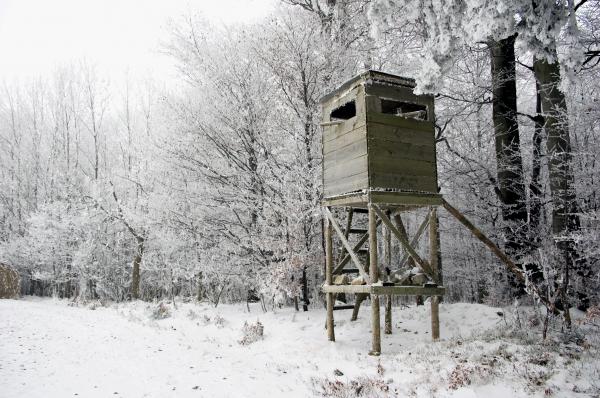 Téli kulináris élvezetek veszélyei