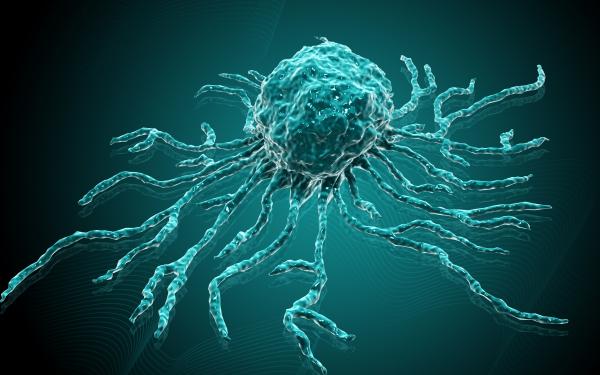 Őssejt-transzplantáció - Fajtái és hatásai 1. rész