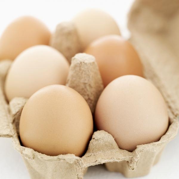 Miért jó a tojás?