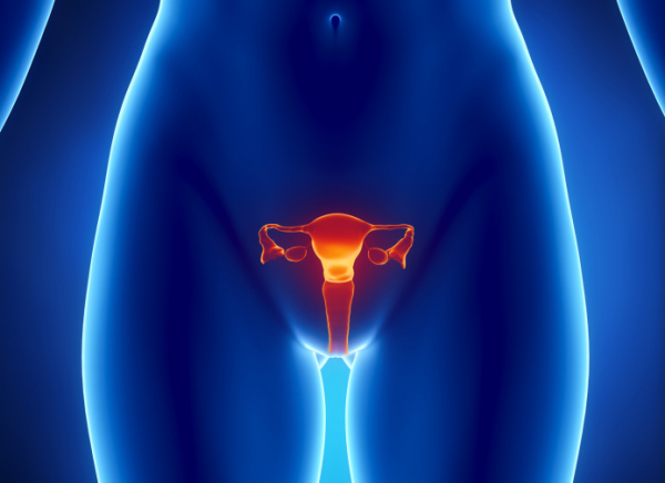 Endometriózis - Méhszövet mindenhol!