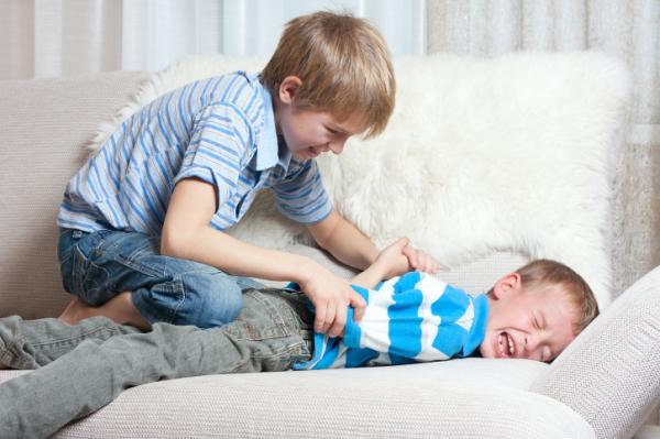 Verekszik a gyerek! Szükséges az agresszió?