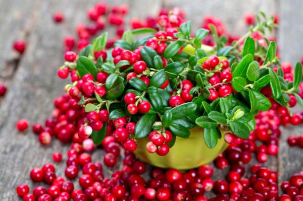A gyümölcs, ami megállítja a hízást