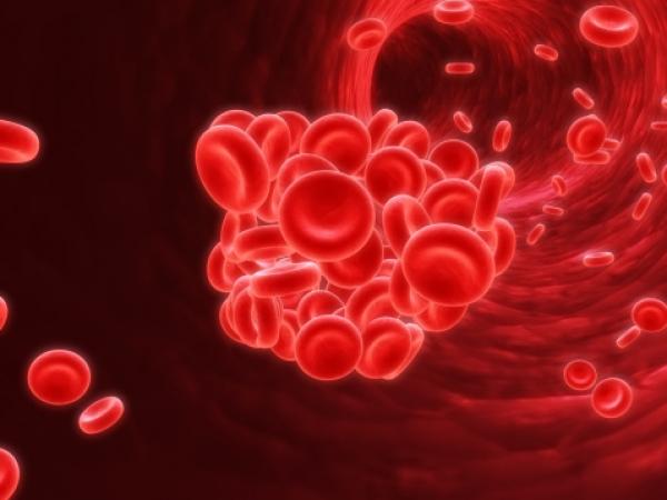 A trombózis okairól