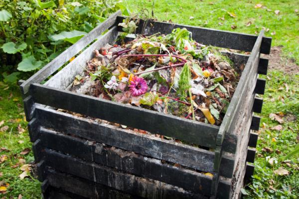 Mi komposztálható házilag?
