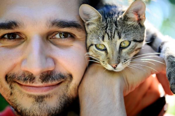 Macskáról emberre? Így is terjed a veszélyes kór