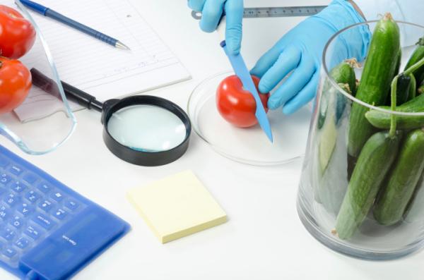 Laboratóriumban készült ételekkel táplálkoztak 105 napig