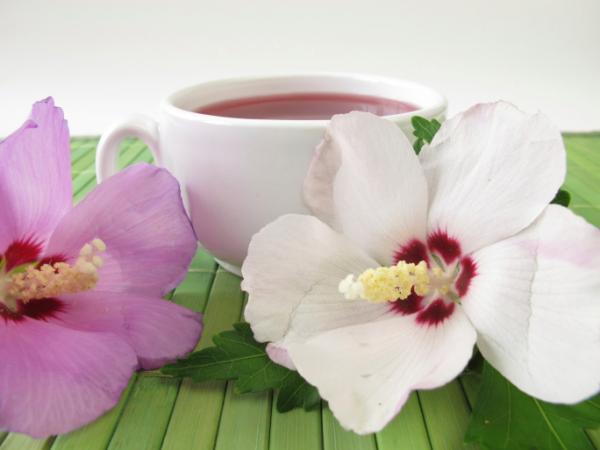 Kínai orvoslás: Hűsítő hatású gyógy- és fűszernövények
