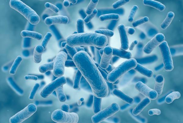 Így élik túl a baktériumok az antibiotikumokat