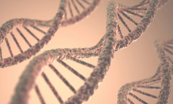 Megtalálták a génhibát, ami erre a gyakori betegségre hajlamosít