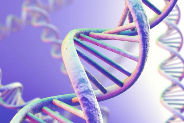 Ezek a gének utalnak skizofréniára