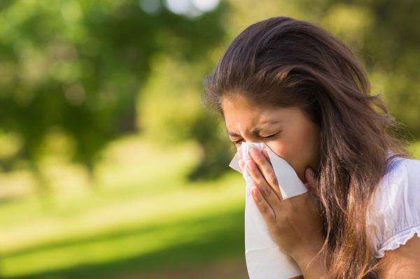 Allergiások figyelem! Még mindig nem enyhül a pollenkoncentráció
