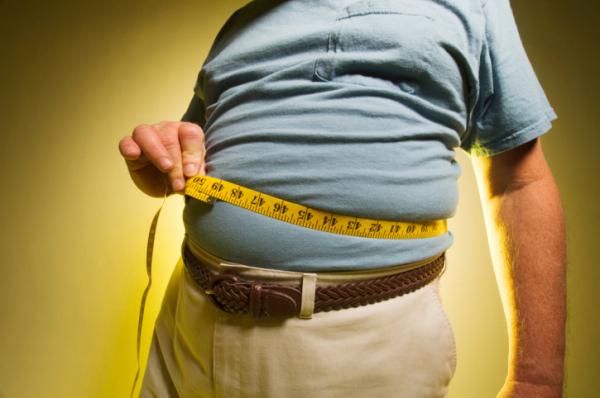 Ezt a szervet öregíti nagyon az elhízás