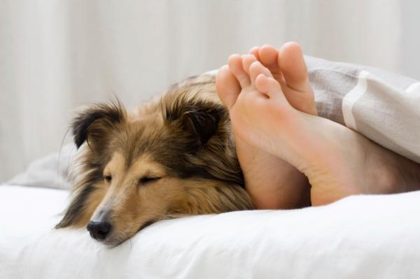 5 dolog, aminek semmi keresnivalója sincs az ágyadban