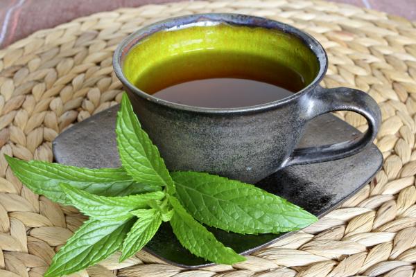 Értékes gyógynövények: a bodza és a menta