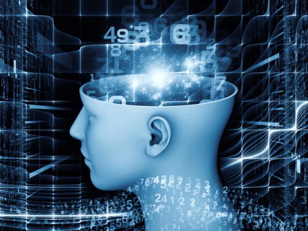 Szuperszámítógépeken dolgoznak a magyar agykutatók