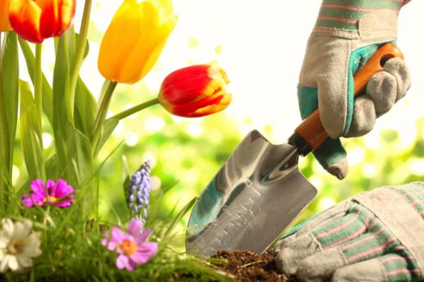 Ízületkímélő tippek kertészkedéshez