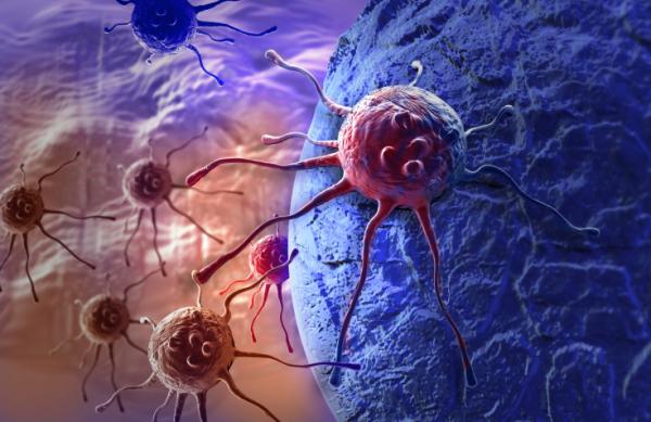 Ezek a fehérjék összezsugorítják a rosszindulatú daganatot