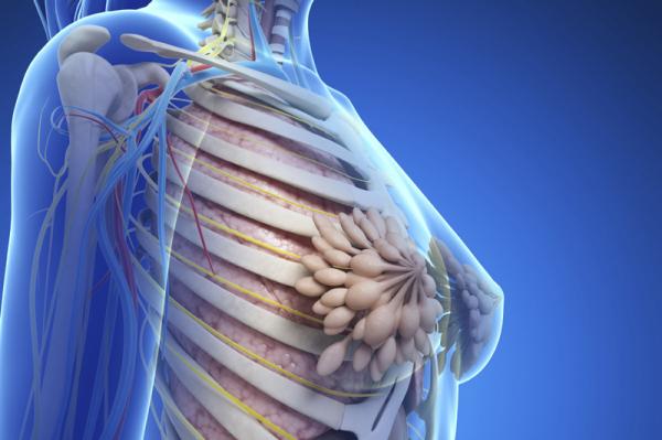 Megváltoztatja a csontokat a mellrák